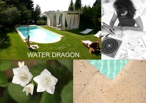 waterdragons